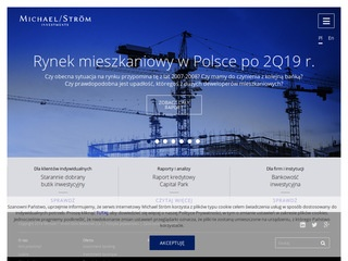 Michaelstrom.pl investment banking