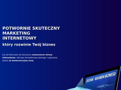 Netmonster.pl - pozycjonowanie